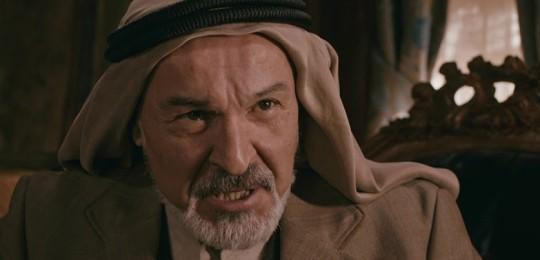 Hakan Vanlı, Mehmetçik dizisinde rol aldı